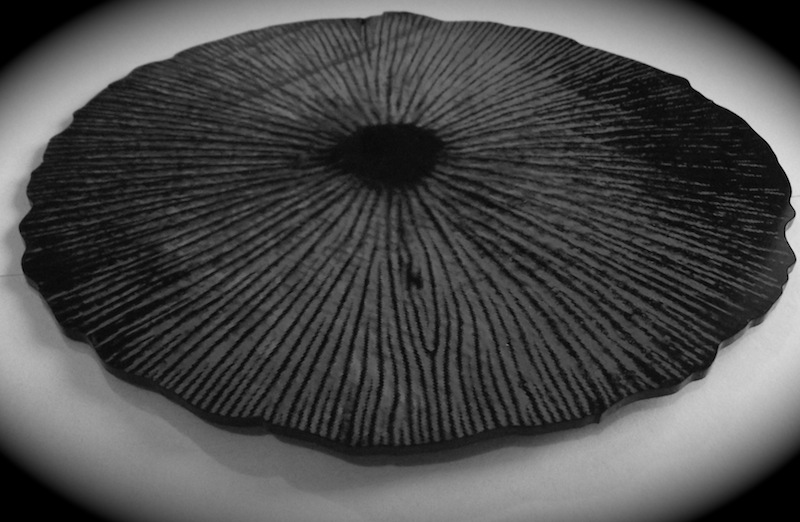 Large spore print on acrylic